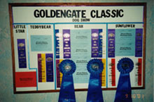 GoldenGate Classic Dog Show Awards