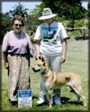 Carolina Dog Blue Ribbon Winner